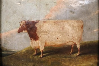Lot 319 Early 19thC English Naive School. A short horned cow in a field